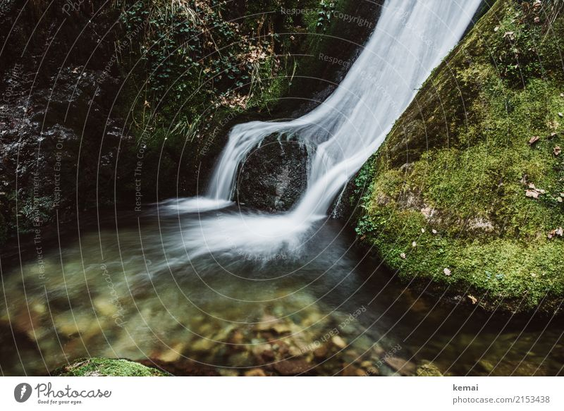 waterfall Life Harmonious Well-being Contentment Senses Relaxation Calm Adventure Freedom Hiking Nature Water Summer Beautiful weather Moss Rock Stone Authentic
