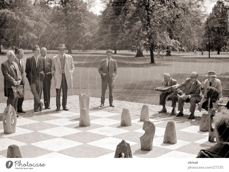 Playing Group Audience Chessboard Chess piece Piece Board game