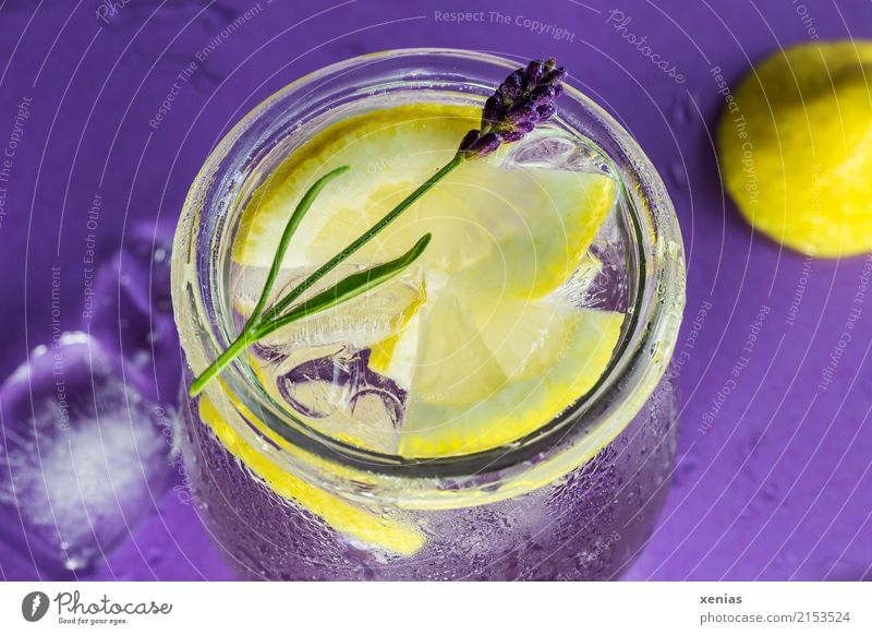 Ice cooled lemon water with lavender Fruit Herbs and spices Lemon Lavender Ice cube Organic produce Vegetarian diet Beverage Cold drink Drinking water Lemonade