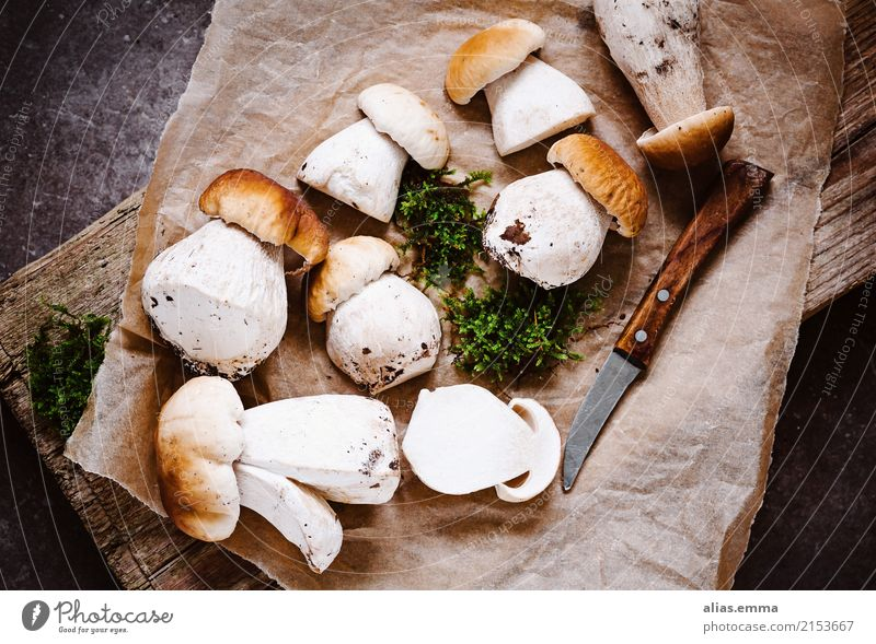 Healthy Eating Forest Dish Food photograph Autumn Fresh To enjoy Delicious Mushroom Aromatic Rustic Mushroom cap Edible Mushroom picker