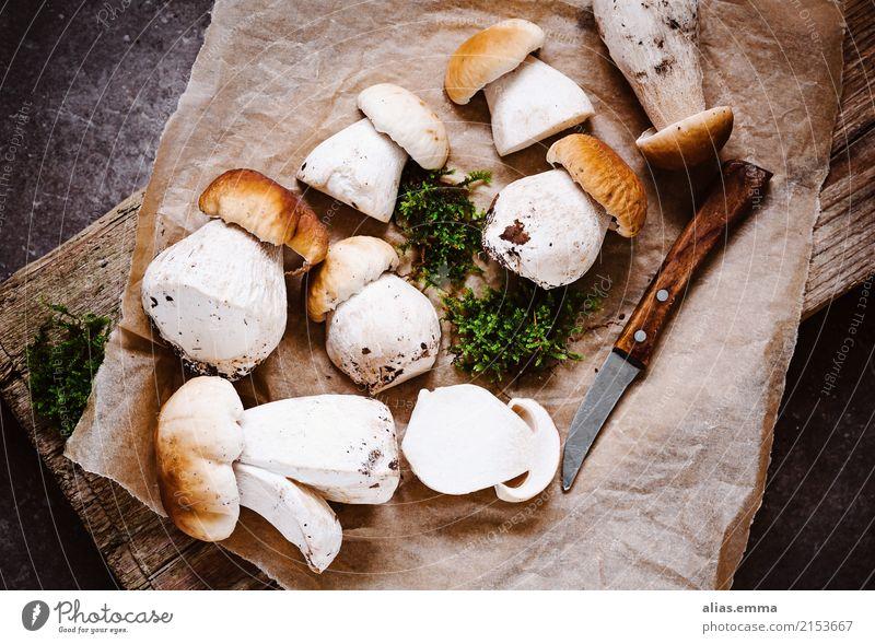 porcini mushrooms Boletus summer stone mushrooms Mushroom Mushroom picker Rustic To enjoy Aromatic Healthy Eating Dish Food photograph Autumn amass Mushroom cap