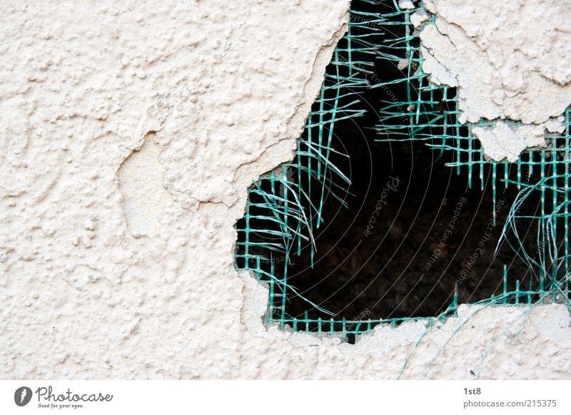 Green Wall (building) Wall (barrier) Facade Network Broken Net Decline Hollow Plaster Destruction Grating Mesh grid