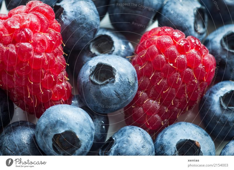 Raspberries with blueberries Fruit Raspberry Blueberry Nutrition Organic produce Vegetarian diet Healthy Eating Fresh Delicious Sweet Red Black Raw vegetables