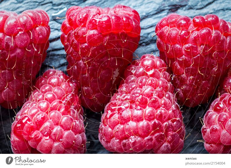 Summer Healthy Eating Red Autumn Gray Fruit Fresh Sweet Delicious Organic produce Row Vegetarian diet Vitamin Raspberry Slate