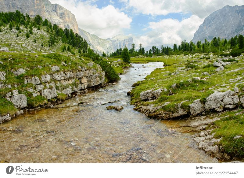 in the Dolomites Vacation & Travel Freedom Summer Mountain Hiking Environment Nature Landscape Clouds Meadow Forest Rock Alps Brook Italy Wet Natural Beautiful