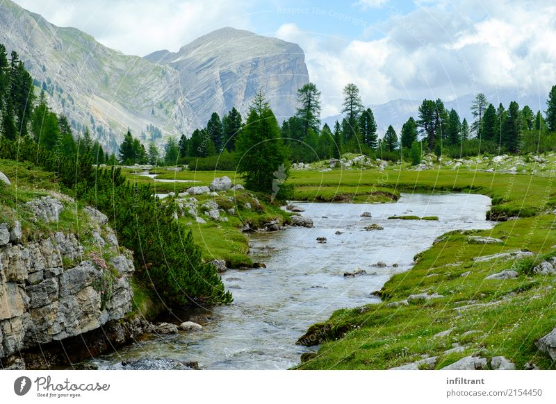 Nature Vacation & Travel Blue Summer Green Water Landscape Clouds Calm Forest Mountain Life Meadow Natural Earth Gray