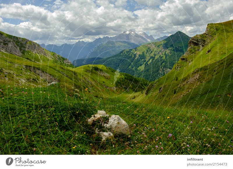 Dolomites high meadow Vacation & Travel Far-off places Summer Mountain Hiking Environment Nature Landscape Clouds Beautiful weather Grass Meadow Alps Peak Italy