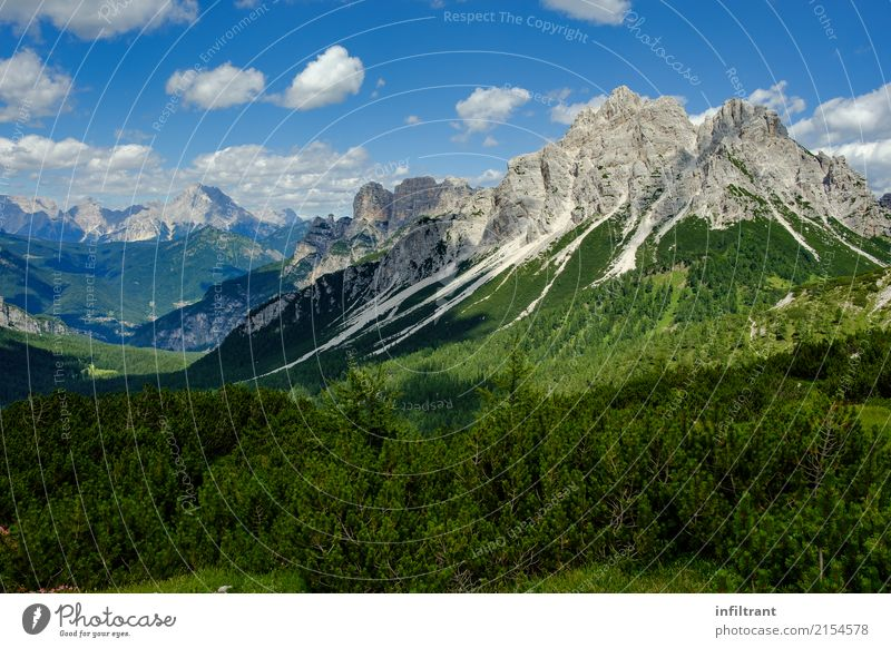 in the Dolomites Vacation & Travel Trip Adventure Far-off places Freedom Mountain Hiking Landscape Sky Clouds Bushes Meadow Forest Hill Rock Alps Peak Italy
