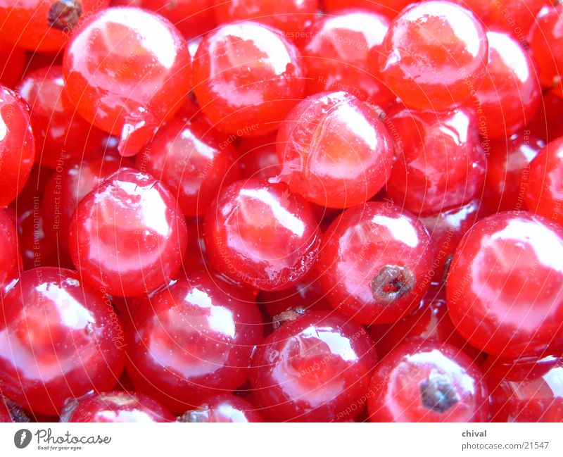 Colour Healthy Sphere Fruit Berries
