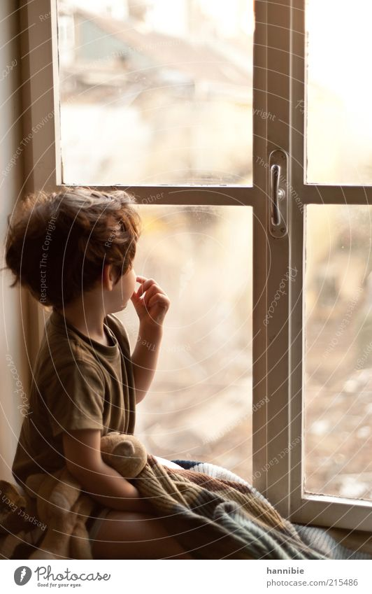 At the window Human being Masculine Child Boy (child) Infancy 1 3 - 8 years House (Residential Structure) Window Cuddly toy Vienna Looking Observe Closed
