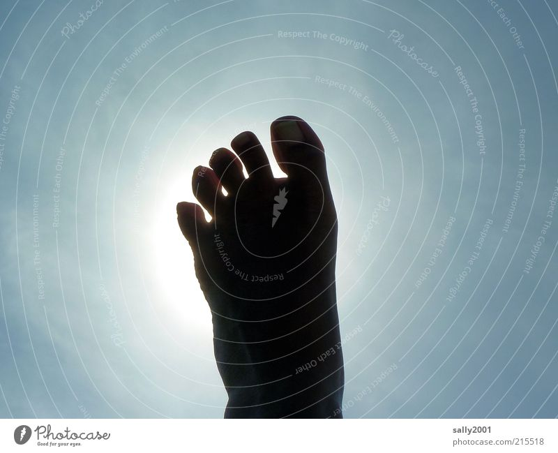 step to heaven Human being Feet Toes Sky Sun Sunlight Summer Beautiful weather Relaxation To enjoy Lie Illuminate Exceptional Simple Infinity Hot Tall Above