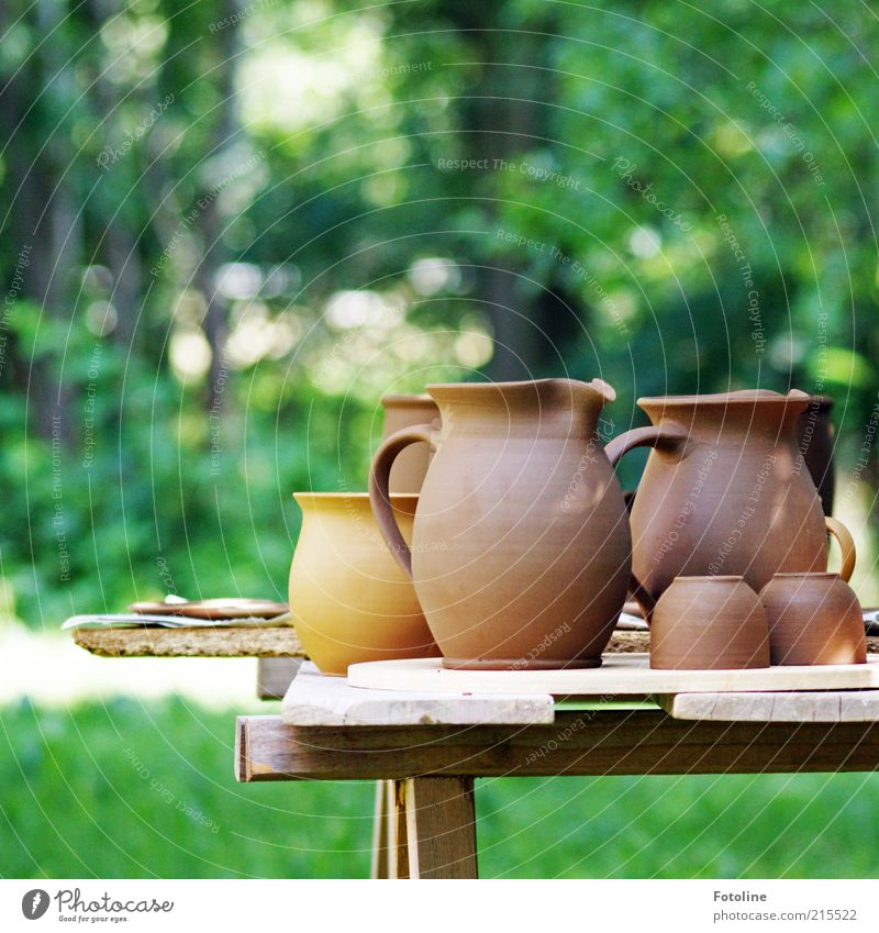 Nature Green Summer Meadow Grass Garden Brown Bright Environment Table New Cup Arts and crafts  Workshop Clay Light