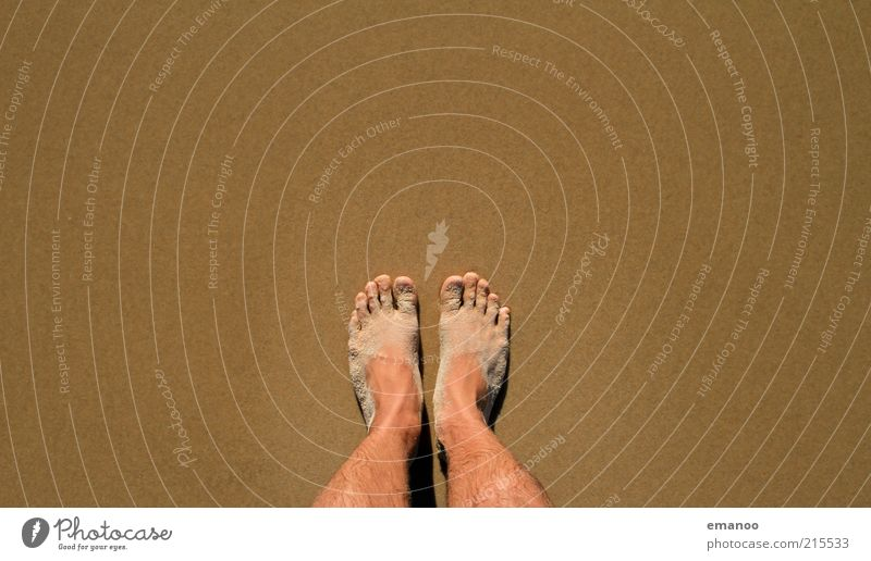 atlantic feet Vacation & Travel Tourism Summer Summer vacation Beach Human being Masculine Feet 1 Nature Sand Coast Stand Wait Dirty Brown 2 Colour photo