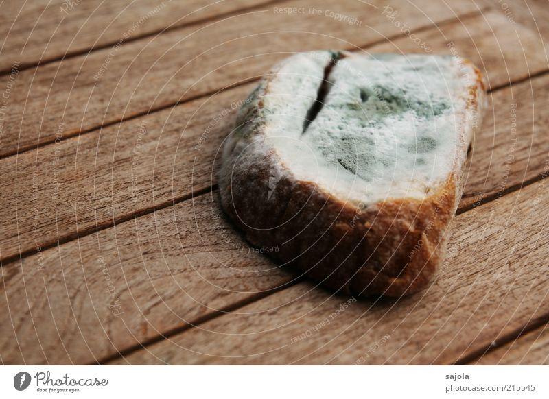 Old Nutrition Wood Gray Brown Food Table Decline Bread Mushroom Disgust Wood grain Mold Furniture Wooden table Inedible