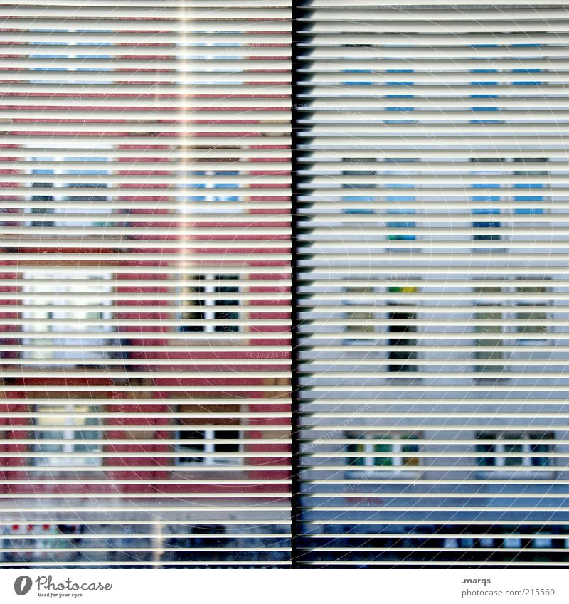 Window Building Line Observe Exceptional Curiosity Discover Window pane Interest Vista Surveillance Voyeurism Venetian blinds Pattern Opposite