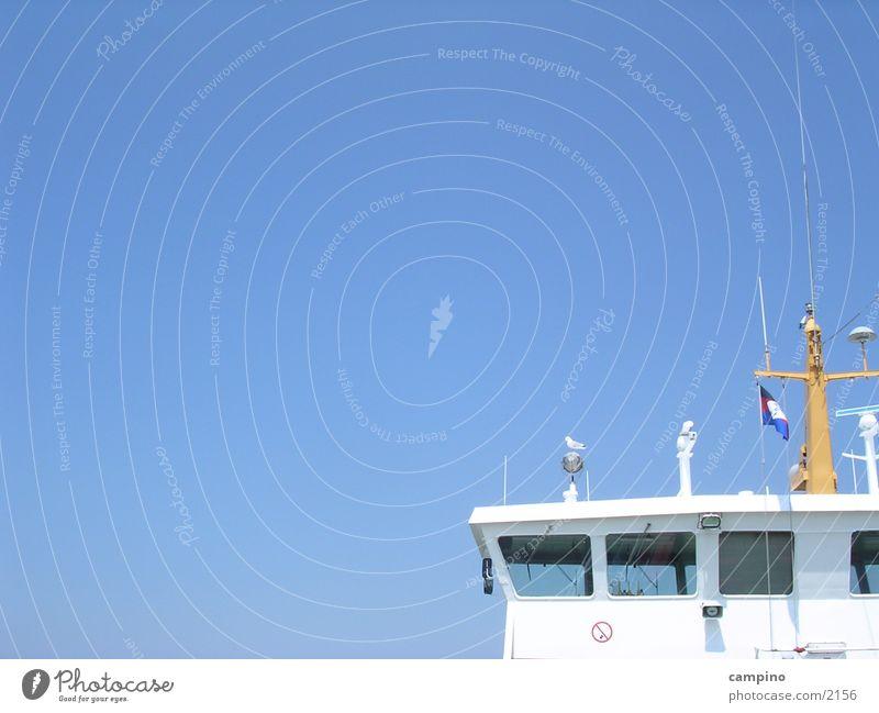 ferry Seagull Summer Norderney Watercraft Navigation Island Sky