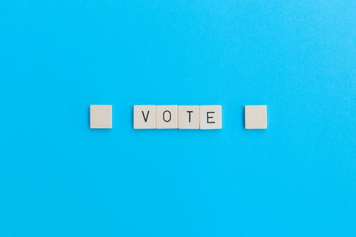 vote Characters Select Simple Blue Contentment Advancement Society Equal Competition Problem solving Perspective Planning Politics and state Protest Change