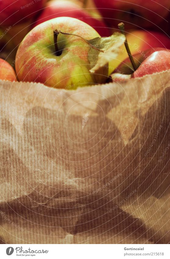 Nutrition Style Healthy Food Fruit Fresh Apple Delicious Mature Harvest Paper bag Organic produce Healthy Eating Apple harvest Apple stalk