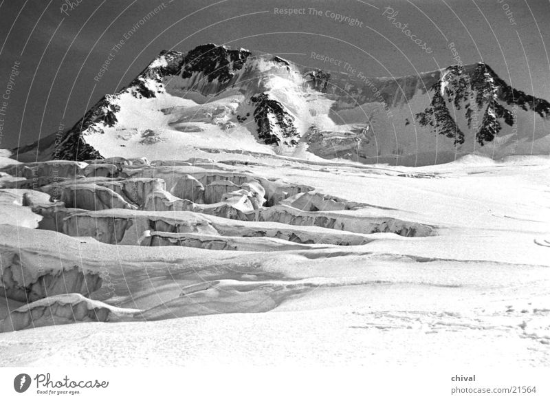 majestically High mountain region Ötz Valley Glacier Back-light Mountain Black & white photo Snow Sun