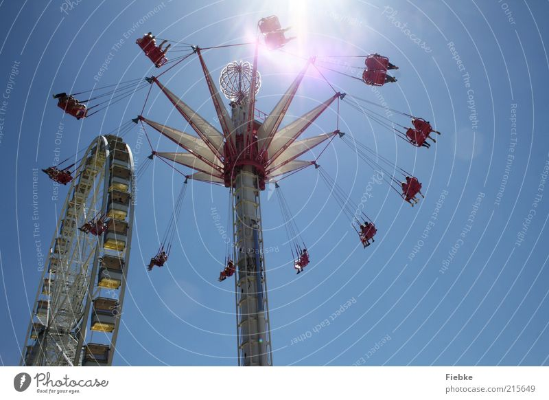 high up Vacation & Travel Trip Summer Sun Human being Group Flying To enjoy Hang To swing Speed Joy Happy Happiness Joie de vivre (Vitality) Chairoplane