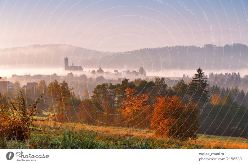 Tower of rural church in misty autumn colorful morning Nature Vacation & Travel White Sun Tree Landscape House (Residential Structure) Far-off places Forest
