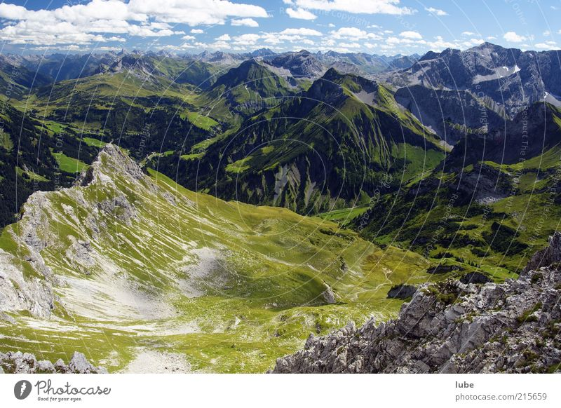View from Künzelspitze Environment Nature Landscape Sunlight Summer Climate Beautiful weather Hill Rock Alps Mountain Freedom Forest of Bregenz