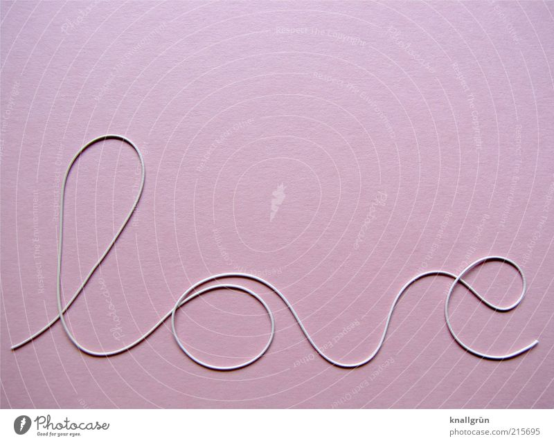 Pink love Characters Round Beautiful White Emotions Joy Happy Love Infatuation Romance Relationship Curve Colour photo Studio shot Deserted Copy Space top