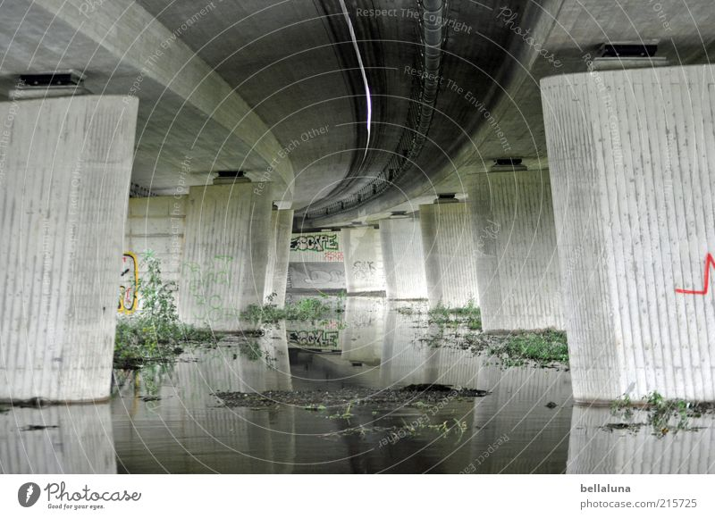 Nature Water Green Plant Gray Weather Gloomy Bushes Highway Under Storm Elements Brook Puddle Environment Car bridge