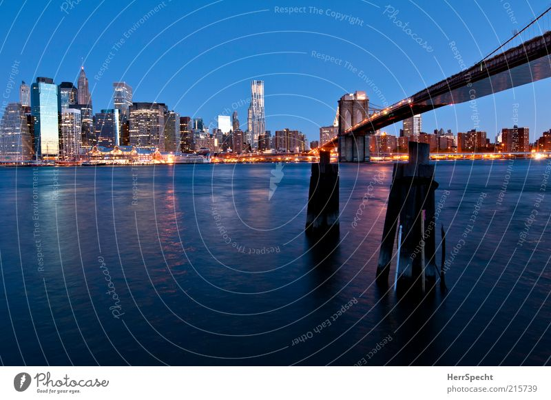 Blue hour at East River New York City Manhattan Brooklyn Brooklyn Bridge Tourist Attraction Landmark Twilight Downtown Colour photo Exterior shot Deserted