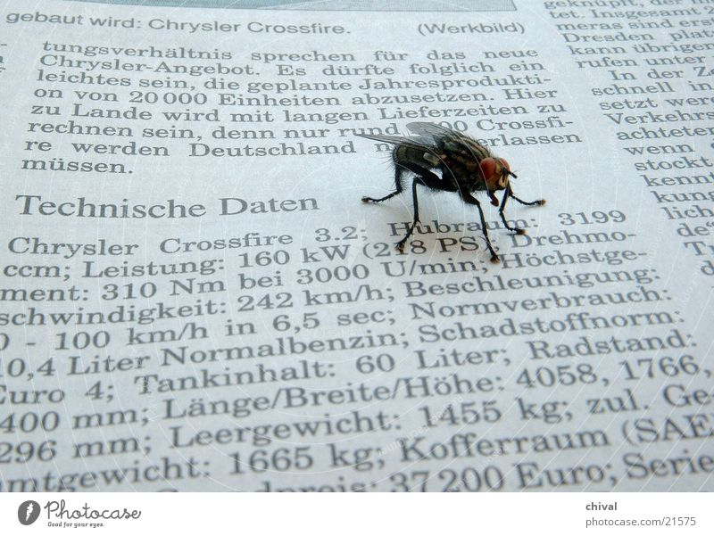 Fly Reading Technology Newspaper Communication