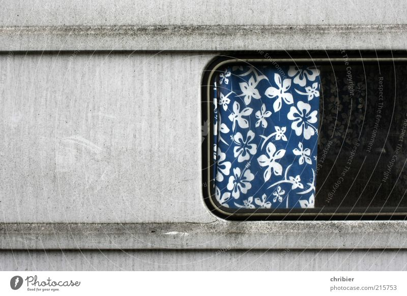 Flowers *** [HH 10.1]*** Vacation & Travel Trip Camping Living or residing Flat (apartment) Interior design Curtain Drape Window Vintage car Caravan Trailer