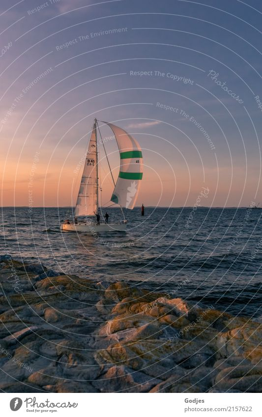 TARGET RUN-IN Sports Sailing Summer Coast Bay Navigation Sailboat Sailing ship Harbour Driving Looking Athletic Maritime Blue Brown Green Pink White Joy