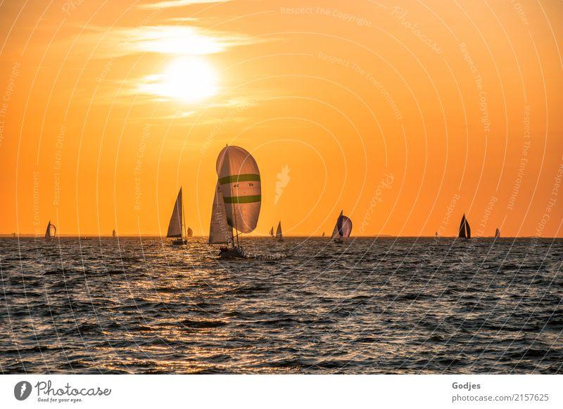 Vacation & Travel Blue Water White Far-off places Coast Movement Sports Orange Illuminate Logistics Longing Baltic Sea Athletic Wanderlust Navigation