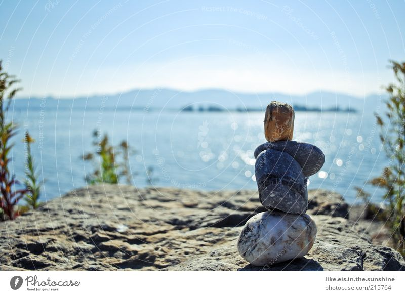 He's enjoying the view. Harmonious Relaxation Calm Far-off places Freedom Summer Environment Nature Elements Water Sky Cloudless sky Horizon Beautiful weather