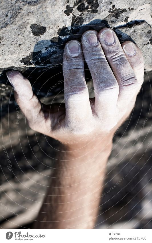 Human being Hand Sports Mountain Stone Power Rock Arm Tall Masculine Adventure Lifestyle Climbing To hold on Touch Firm