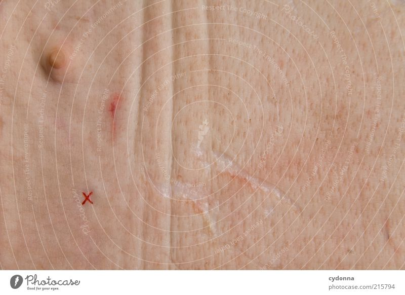 Nutrition Life Skin Esthetic Transience Education Chest Crucifix Pain Discover Whimsical Bizarre Disgust Identity Value Nipple