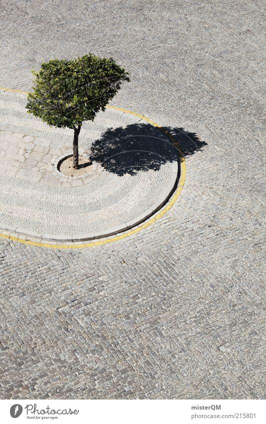 Tolerated. Art Esthetic Tree Cramped Loneliness Nature Arrangement Asphalt Cobblestones Green Environmental protection Sidewalk Lemon tree Minimalistic