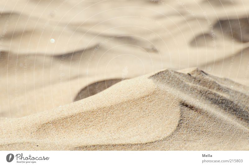 Nature Beach Vacation & Travel Warmth Sand Environment Near Soft Climate Desert Beach dune Dune Fine Drought Climate change Copy Space