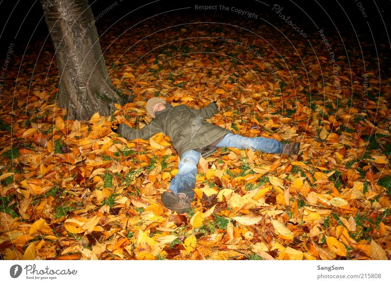 autumn foliage angel Infancy 1 Human being Nature Earth Autumn Tree Touch Relaxation Sleep Dirty Brown Yellow Green Red Emotions Joy Autumn leaves Leaf