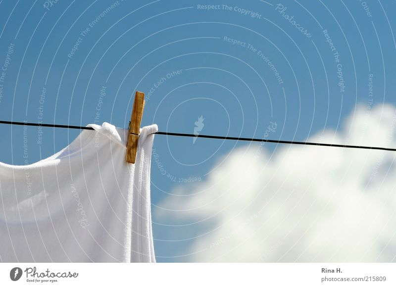 Sky White Blue Summer Clouds Wood Bright Weather Fresh Simple Clean Past Hang Beautiful weather Laundry Dry