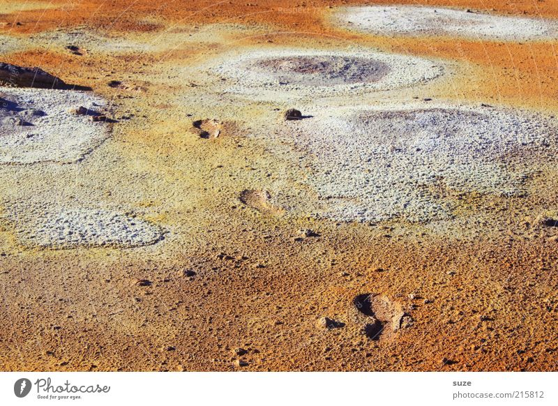 moon landing Environment Nature Landscape Climate Volcano Footprint Exceptional Hot Orange Iceland geothermal area Hot springs Mývatn Source Sulphur Hell Tracks