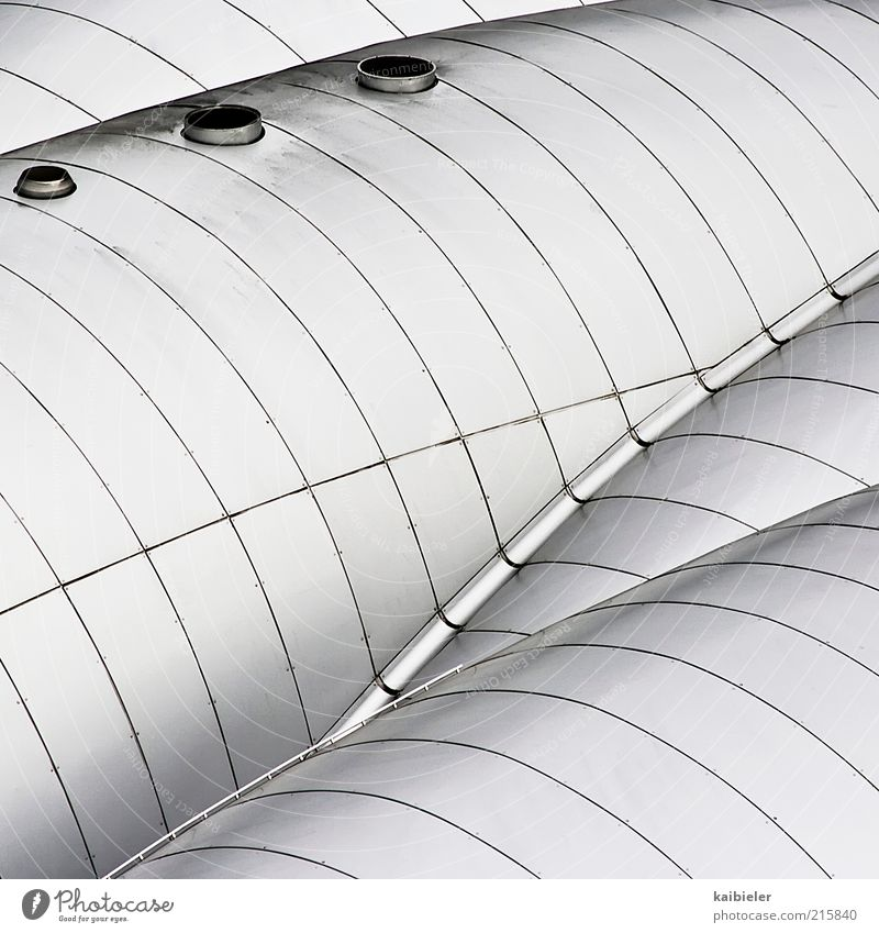 Organic Architecture House (Residential Structure) Manmade structures Building Roof Metal Esthetic Cold Round Gray Silver White Modern Line Ventilation Concave
