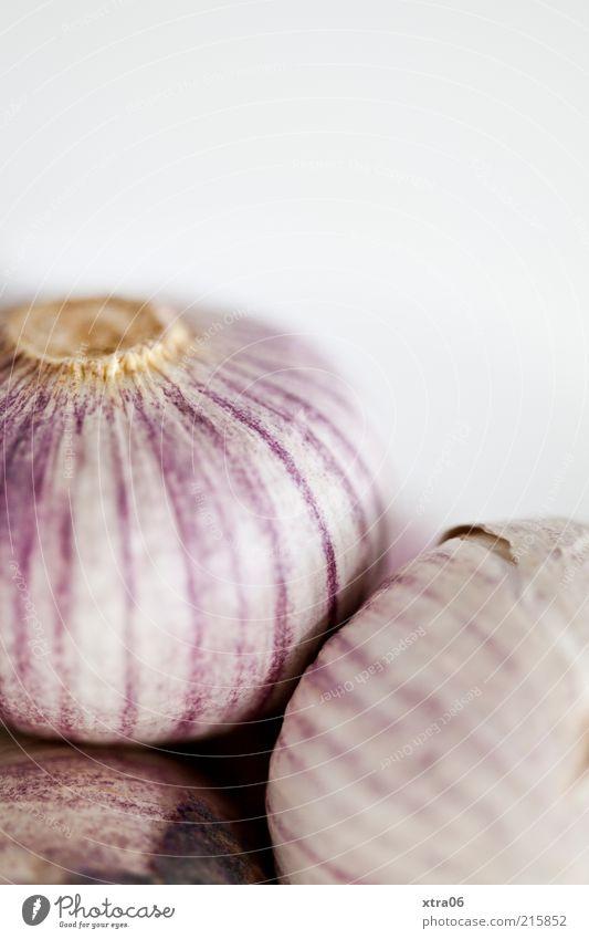garlic Food Herbs and spices Nutrition Delicious Garlic Colour photo Interior shot Close-up Copy Space top Neutral Background Blur Garlic bulb Studio shot