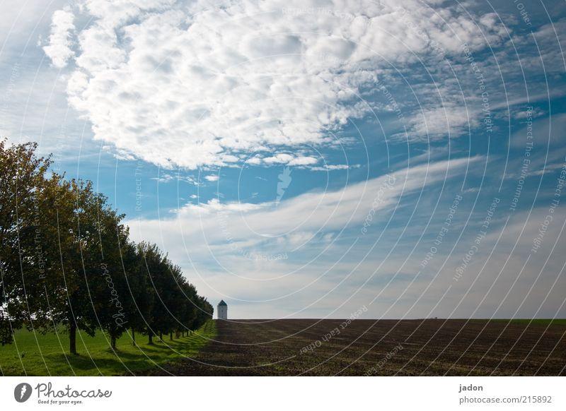 Sky Tree Blue Clouds Far-off places Autumn Lanes & trails Landscape Field Horizon Arrangement Esthetic Tower Protection Infinity Lighthouse