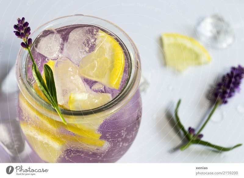Flavoured lavender water with lemon, lavender blossom and ice cubes Beverage Lavender Lemon Ice cube fruit Herbs and spices Cold drink Drinking water Glass