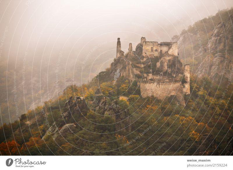 view of historic castle ruin, colorful autumn Vacation & Travel Tourism Trip Adventure Mountain Hiking Landscape Autumn Fog Rain Tree Park Forest Hill Alps