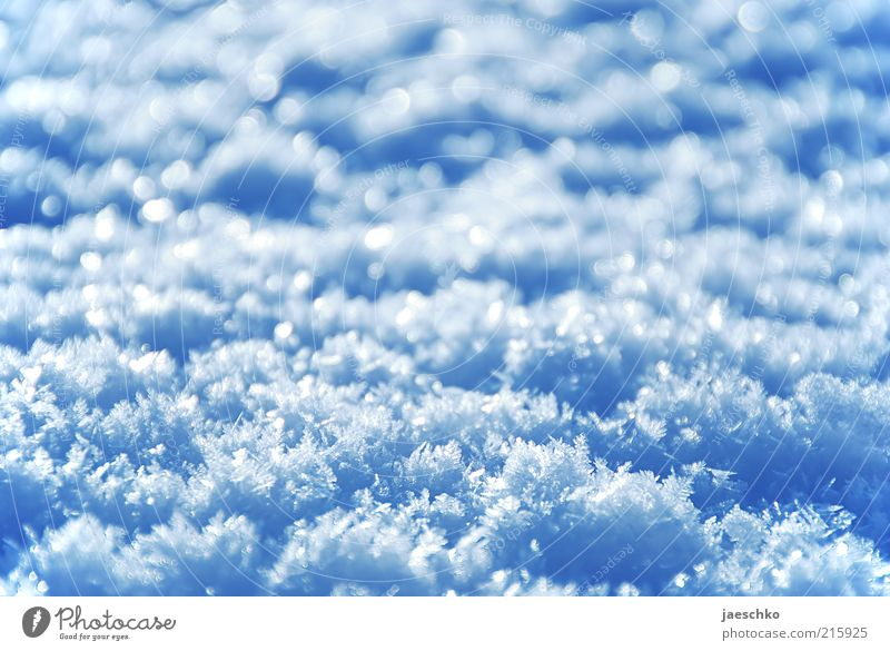 White Blue Winter Cold Snow Ice Fresh Frost Crystal structure Snowflake Copy Space Virgin snow Snow crystal Snow layer