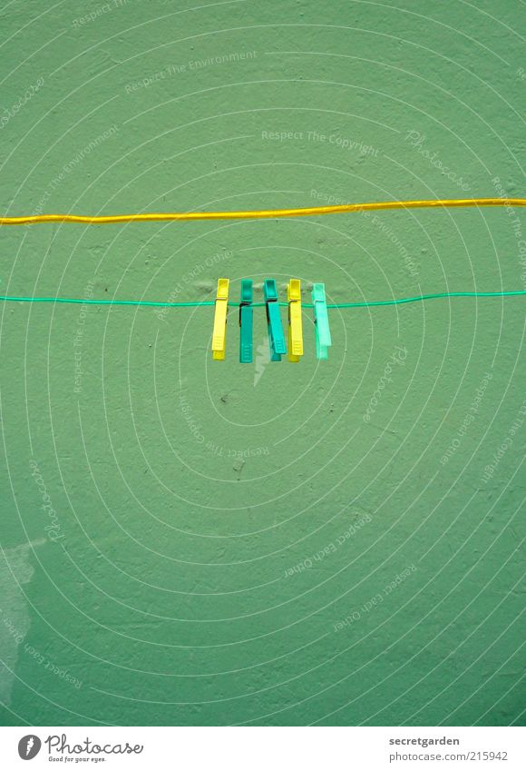 [HH 10.1] yellow-turquoise-turquoise-yellow-green. Living or residing Wall (barrier) Wall (building) Plastic Line Yellow Green Together Orderliness Cleanliness