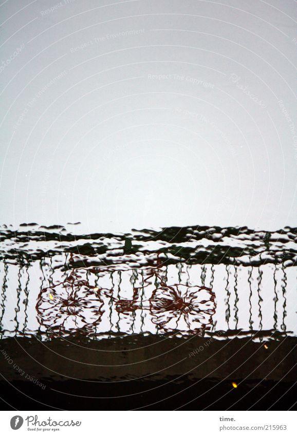 Human being Sky Water Loneliness Dark Gray Metal Waves Bicycle Bridge Driving Metalware Handrail Bridge railing Prop Unclear