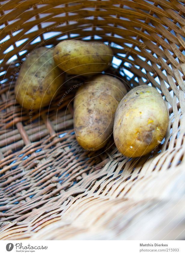 potatoes Food Nutrition Organic produce Vegetarian diet Esthetic Potatoes Basket Raw Supply Storage tank Colour photo Exterior shot Close-up Detail Deserted